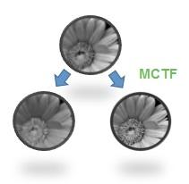 MCTF 1